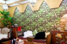 亚热蕉林----巴厘岛风情图_2