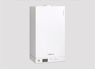 VITOPEND 100W--WH1D 24KW/30KW