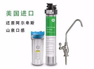 美国GE VOC300高端进口净水器