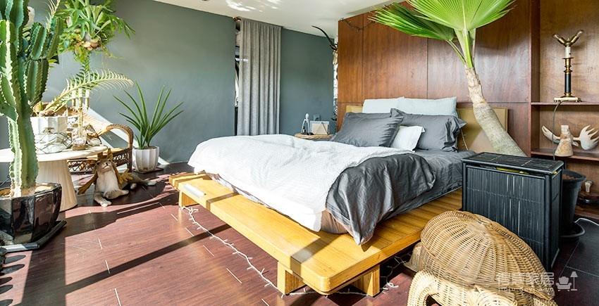 植物就是最好的装饰品!顶楼老公寓的秘密花园!图_1
