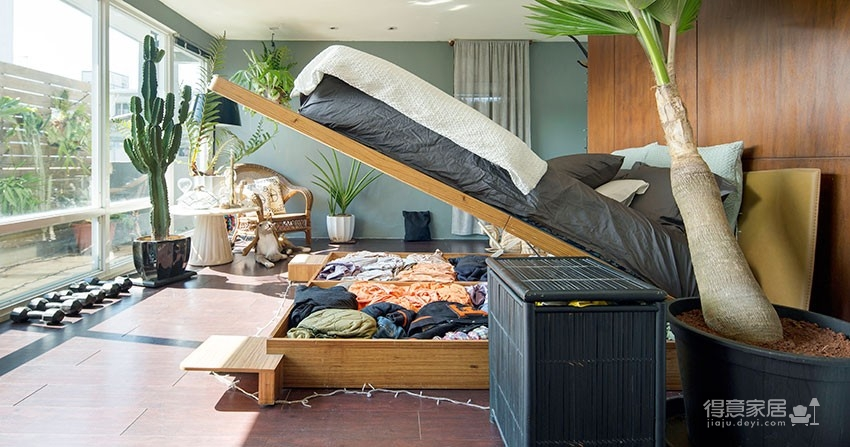 植物就是最好的装饰品!顶楼老公寓的秘密花园!图_6