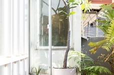 植物就是最好的装饰品!顶楼老公寓的秘密花园!图_18