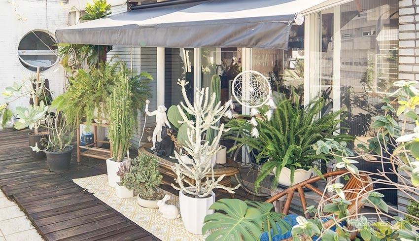 植物就是最好的装饰品!顶楼老公寓的秘密花园!图_20
