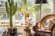 植物就是最好的装饰品!顶楼老公寓的秘密花园!图_8