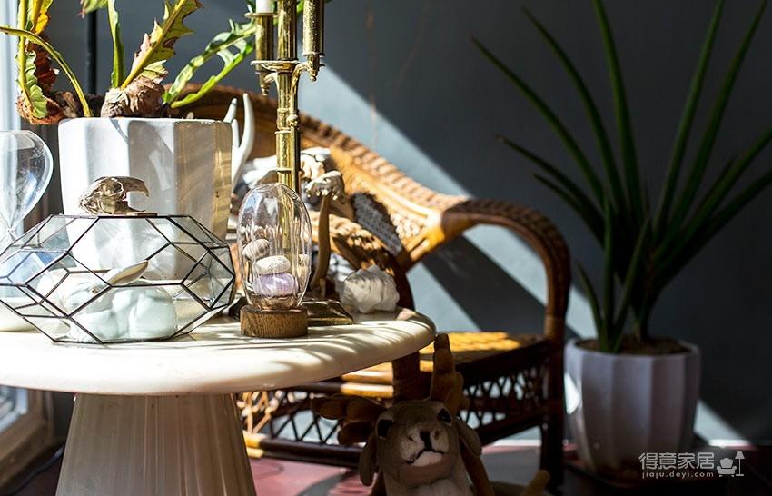 植物就是最好的装饰品!顶楼老公寓的秘密花园!图_4