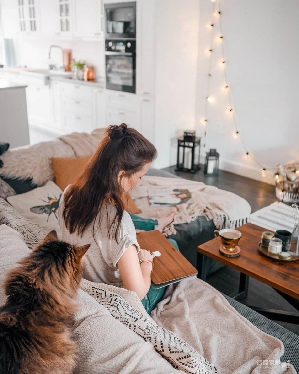 理想的生活:一人一猫一屋