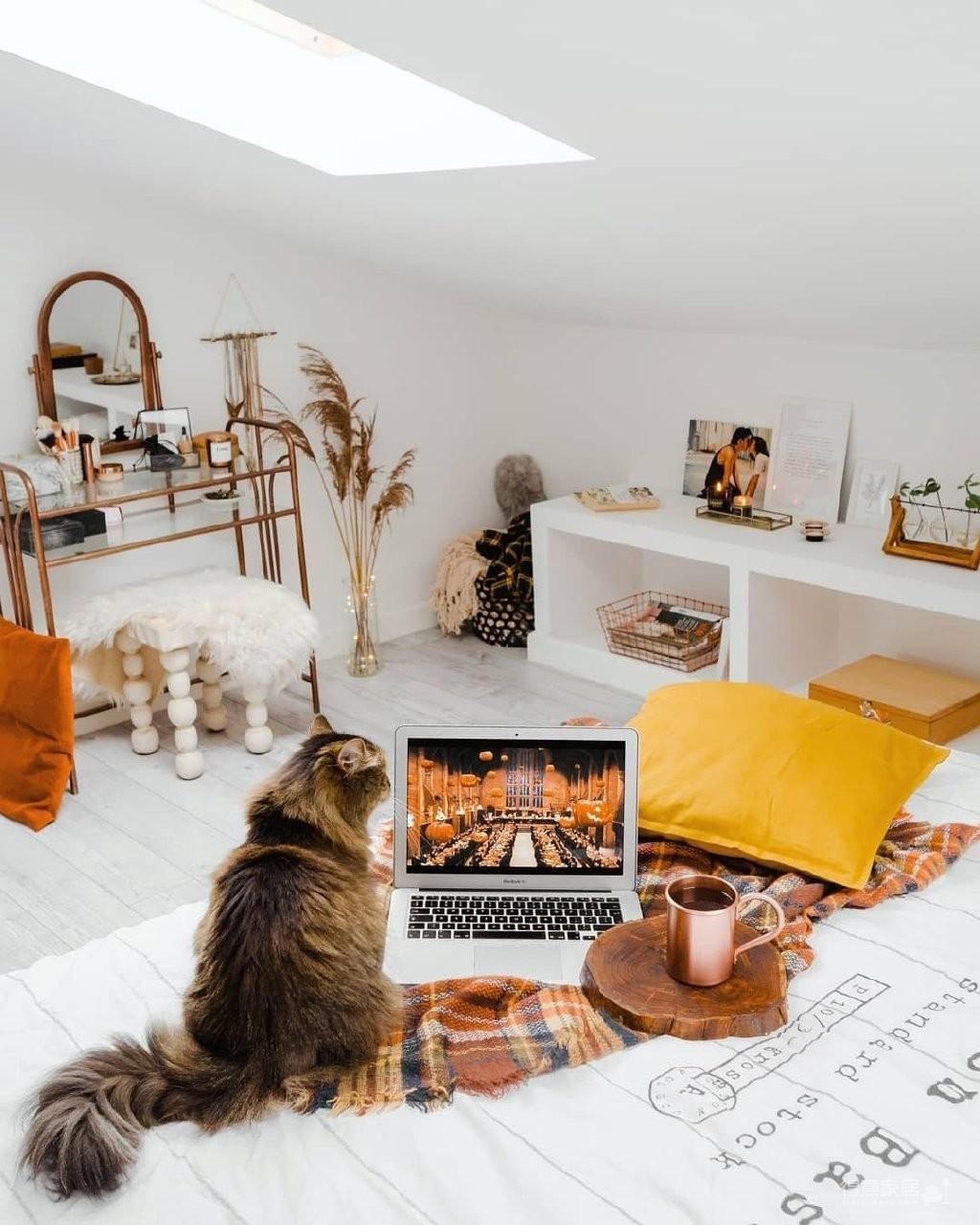 理想的生活:一人一猫一屋图_5