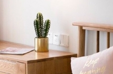 清新北欧风,客厅里黄色的小抱枕是点睛之笔,一下提亮了空间的色彩性 图_4