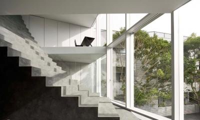 日本神奇的楼梯设计,好似从房子里长出来!