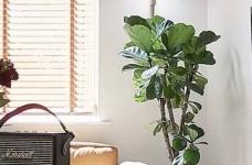97㎡舒适北欧3室2厅,打造精致文艺的复古腔调图_8