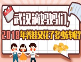 2019养娃账单